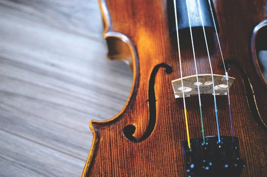 A cello with its cords facing up. The cello is on a wood surface and it's a banner image for a music school in Tampa