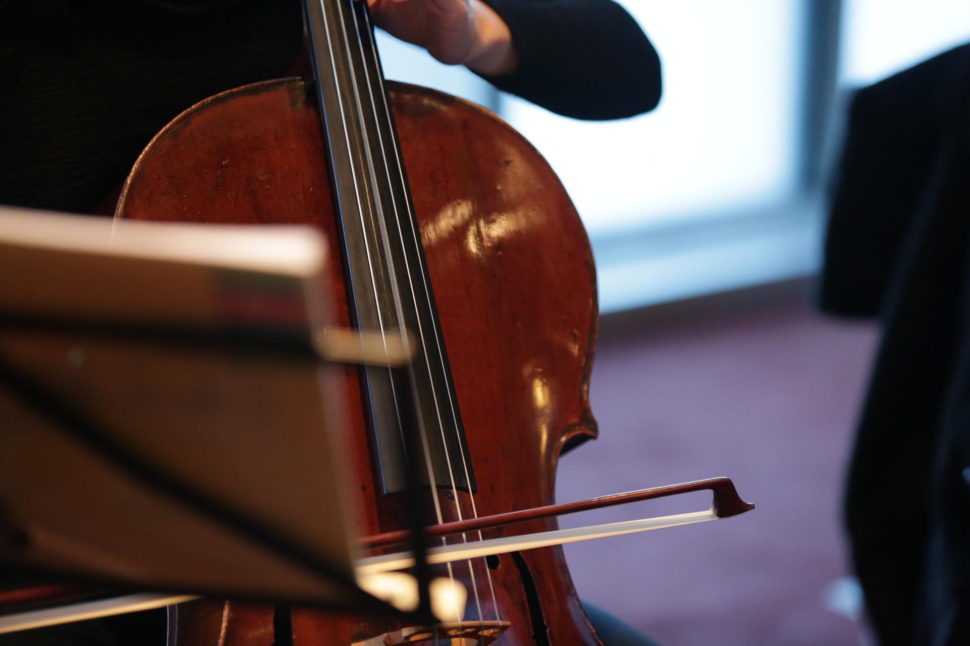 Private Cello Lesson Barrett School of Music